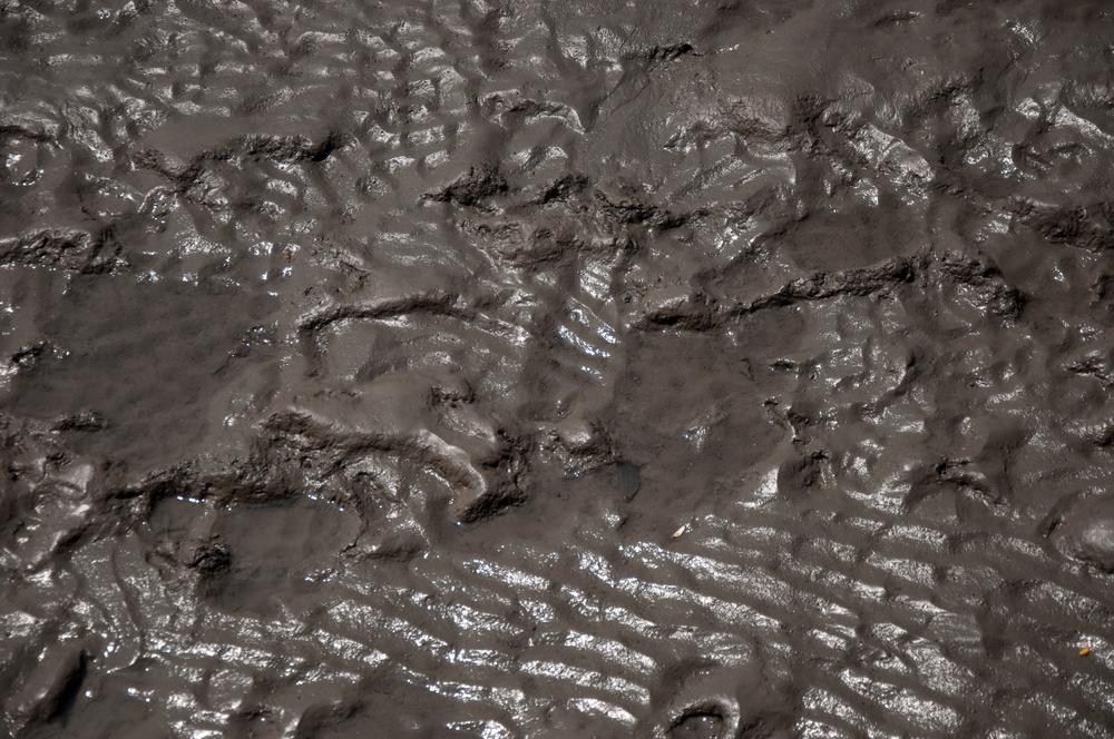 quais-os-principais-tipos-de-lodo-e-suas-classificacoes24191