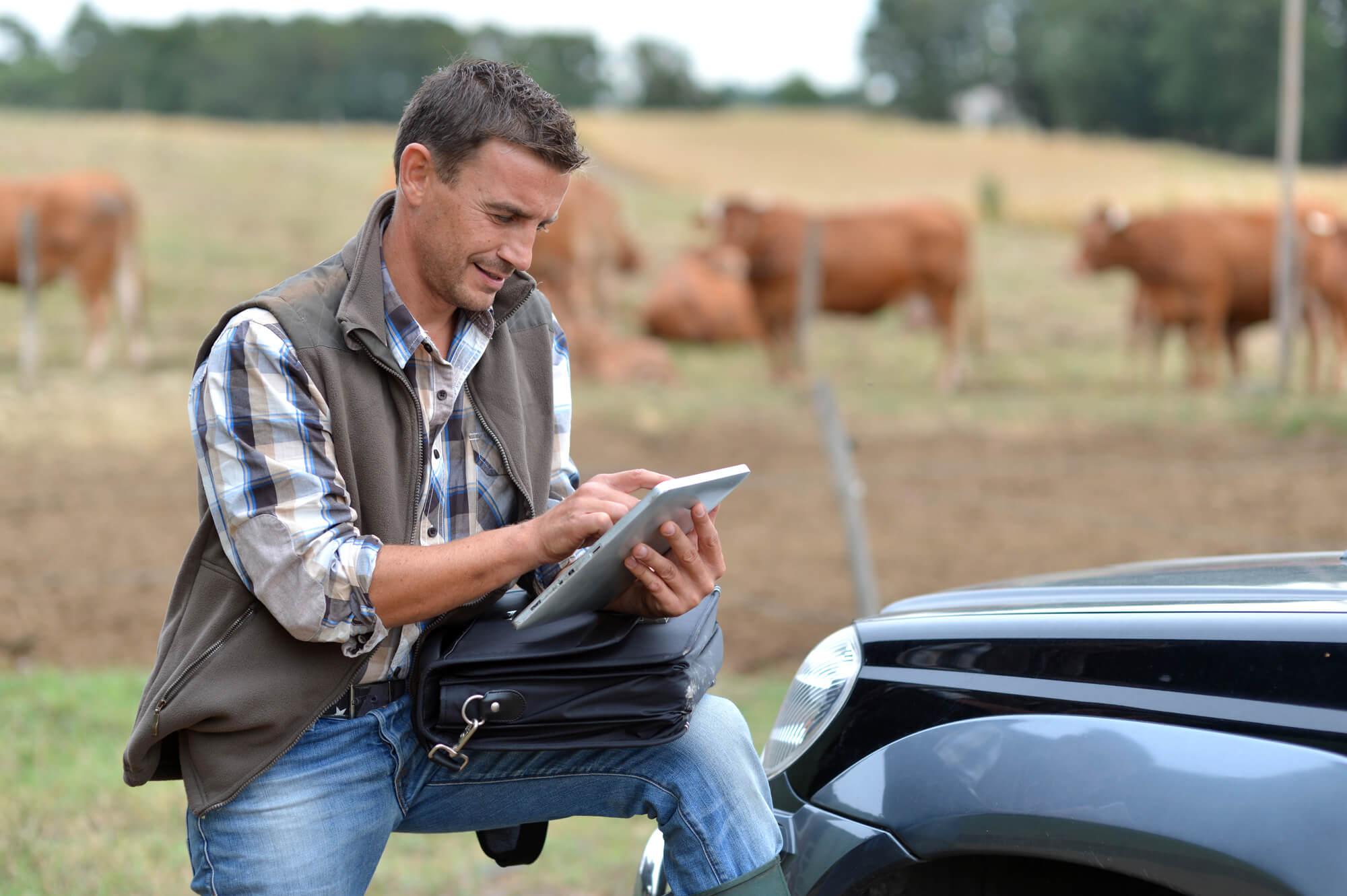 fazenda-sustentavel-descubra-o-que-e-e-como-colocar-em-pratica.jpeg
