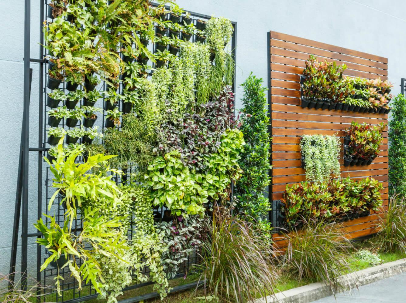 horta-vertical-em-restaurante-conheca-essa-tendencia.jpeg