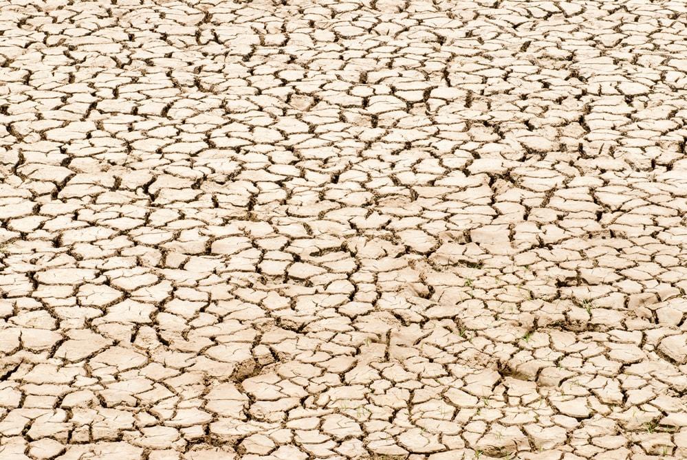 periodo-de-seca-5-dicas-para-um-agricultor-enfrentar.jpeg