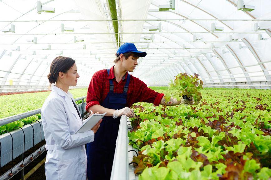 fertilizantes-biotecnologicos-mitos-e-verdades.jpeg