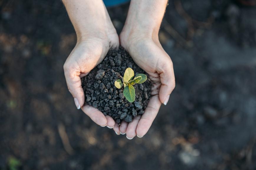 5-maneiras-de-evitar-autuacoes-ambientais.jpeg