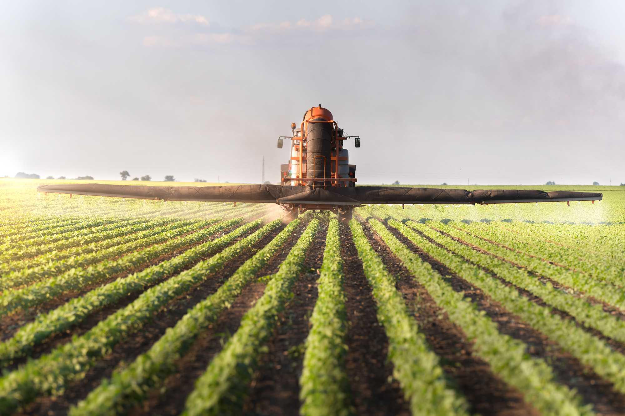 agricultura intensiva e extensiva